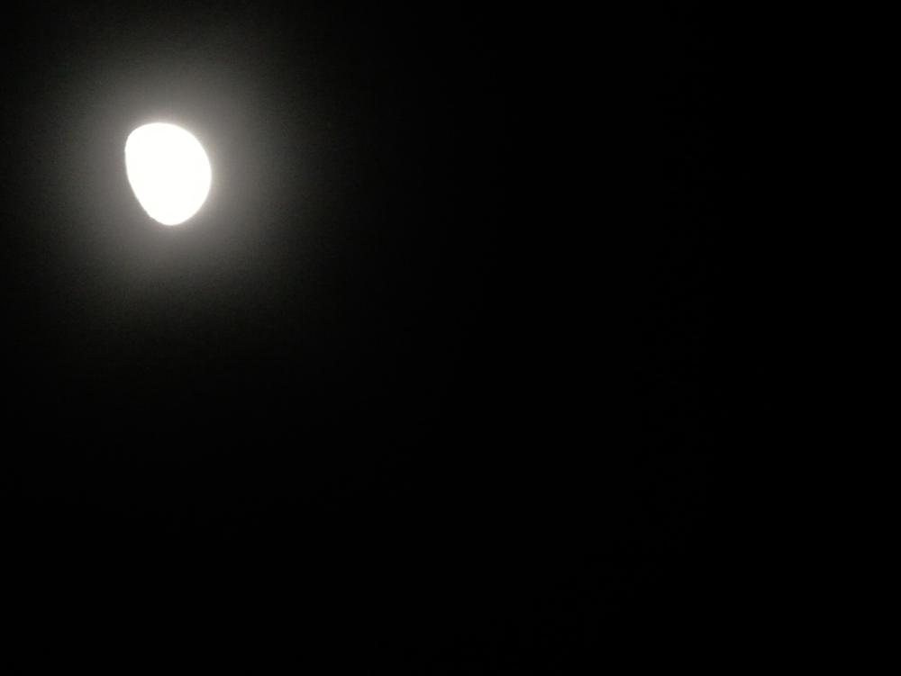 Februar Moon