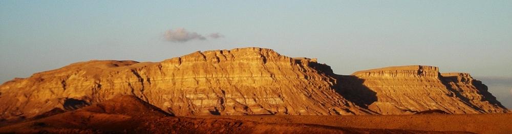 Mt Ardon