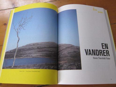 """""""En Vandrer"""" af Hanne T. Fisker"""