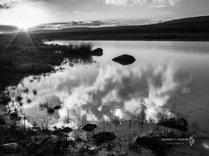 'Sunset Reflection'